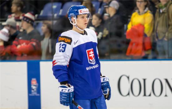 3cc48dc3c7368 NHL sa nateraz odkladá, Adam Liška mieri do Čerepovca